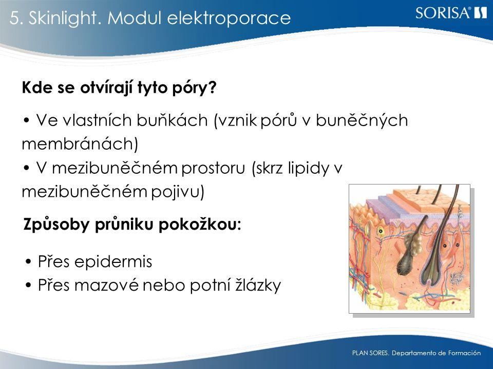 5. Skinlight. Modul elektroporace