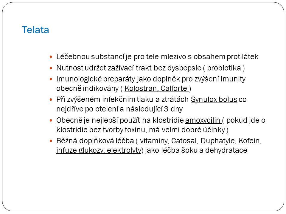 Telata Léčebnou substancí je pro tele mlezivo s obsahem protilátek