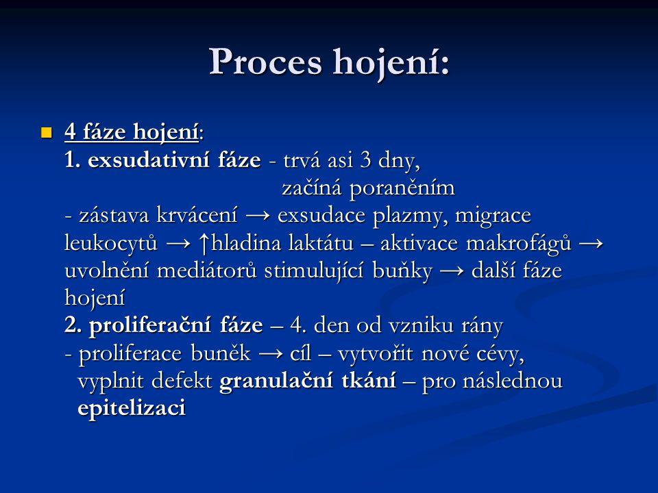 Proces hojení: