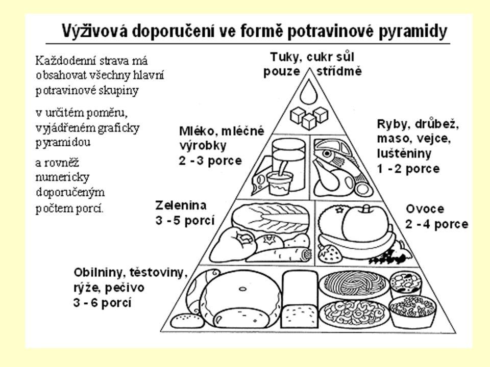 Metabolismus = přeměna látek a energií přijaté živiny – růst organismu