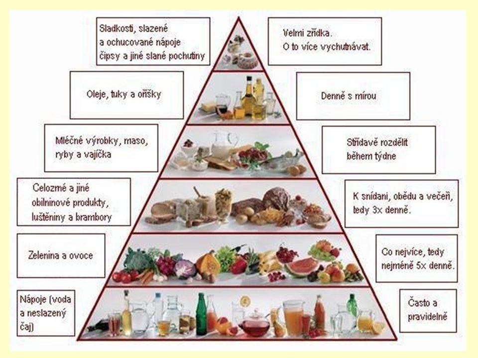 Metabolismus Výživa: základní živiny – cukry, tuky, bílkoviny - voda