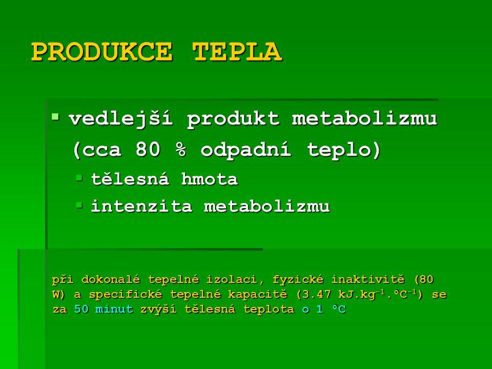 PRODUKCE TEPLA vedlejší produkt metabolizmu (cca 80 % odpadní teplo)