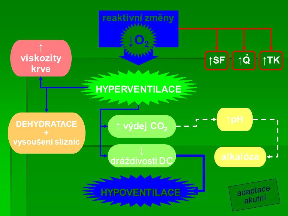 ↓O2 ↓O2 reaktivní změny ↑ viskozity krve ↑SF ↑Q ↑TK HYPERVENTILACE ↑pH