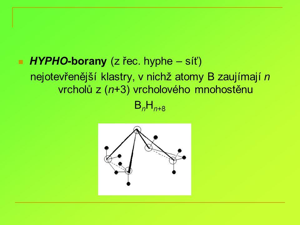 HYPHO-borany (z řec. hyphe – síť)