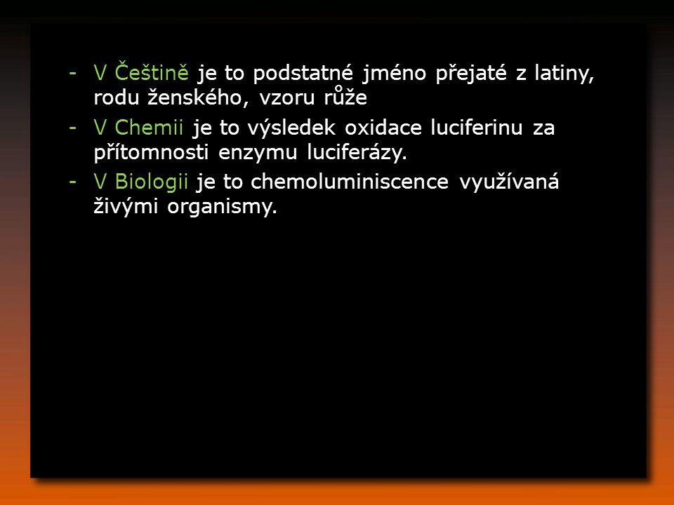V Češtině je to podstatné jméno přejaté z latiny, rodu ženského, vzoru růže