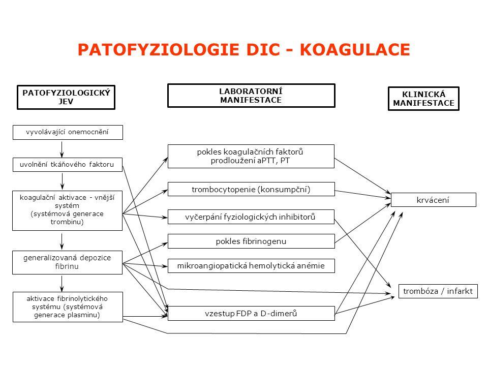 PATOFYZIOLOGIE DIC - KOAGULACE