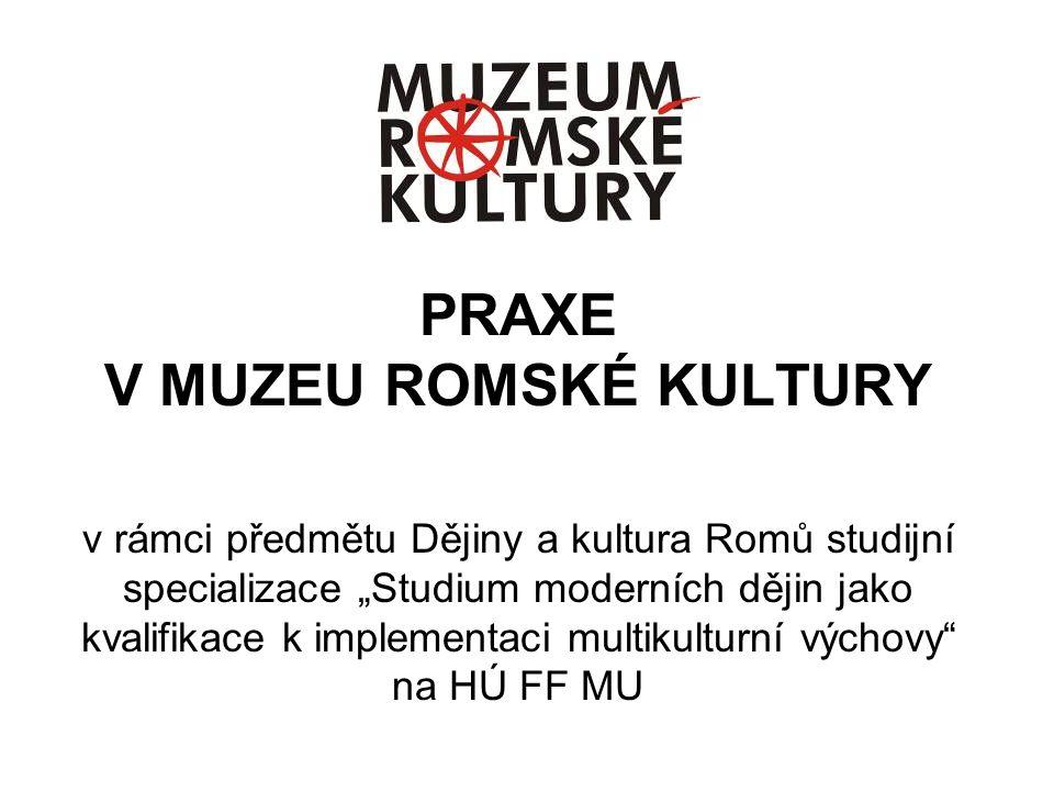 PRAXE V MUZEU ROMSKÉ KULTURY