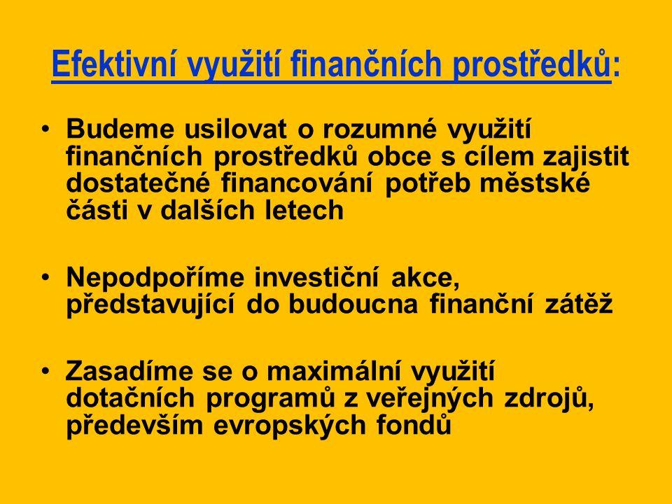 Efektivní využití finančních prostředků: