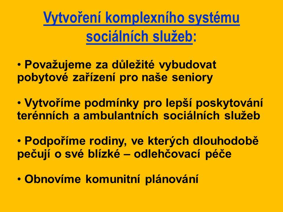 Vytvoření komplexního systému sociálních služeb: