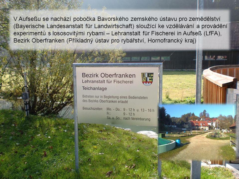 V Aufseßu se nachází pobočka Bavorského zemského ústavu pro zemědělství (Bayerische Landesanstalt für Landwirtschaft) sloužící ke vzdělávání a provádění experimentů s lososovitými rybami – Lehranstalt für Fischerei in Aufseß (LfFA), Bezirk Oberfranken (Příkladný ústav pro rybářství, Hornofrancký kraj)