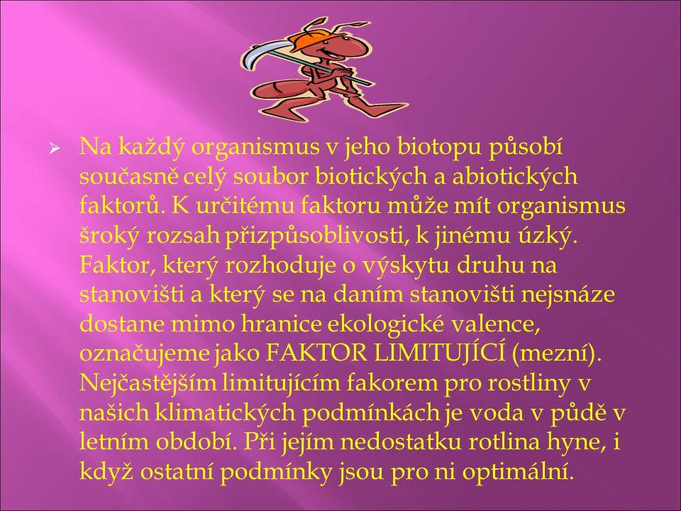 Na každý organismus v jeho biotopu působí současně celý soubor biotických a abiotických faktorů.