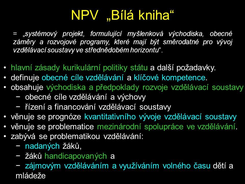 """NPV """"Bílá kniha"""