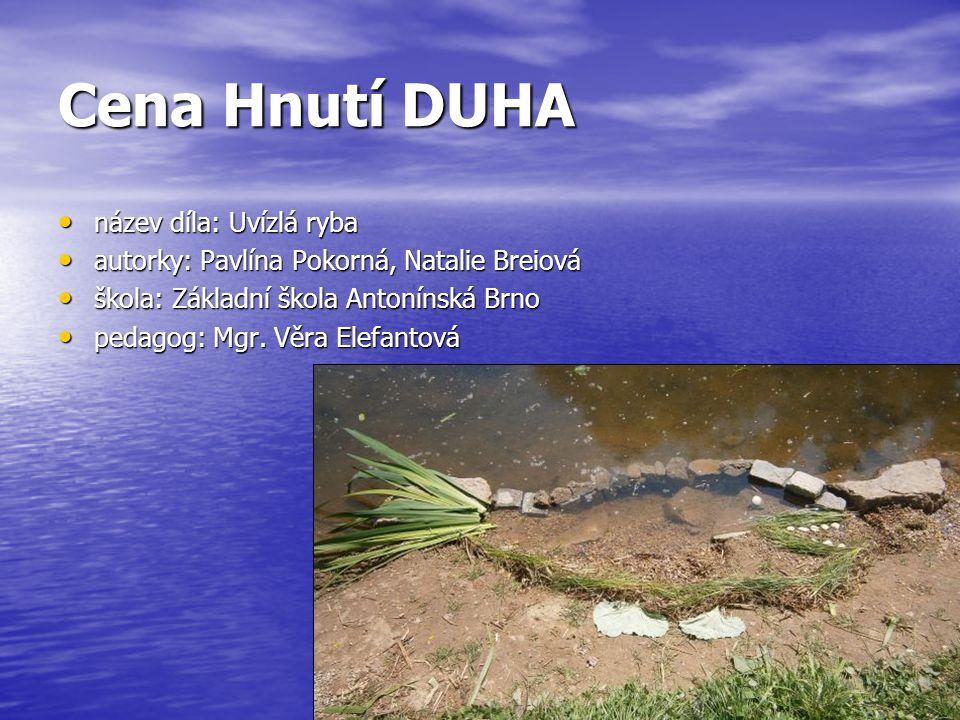 Cena Hnutí DUHA název díla: Uvízlá ryba