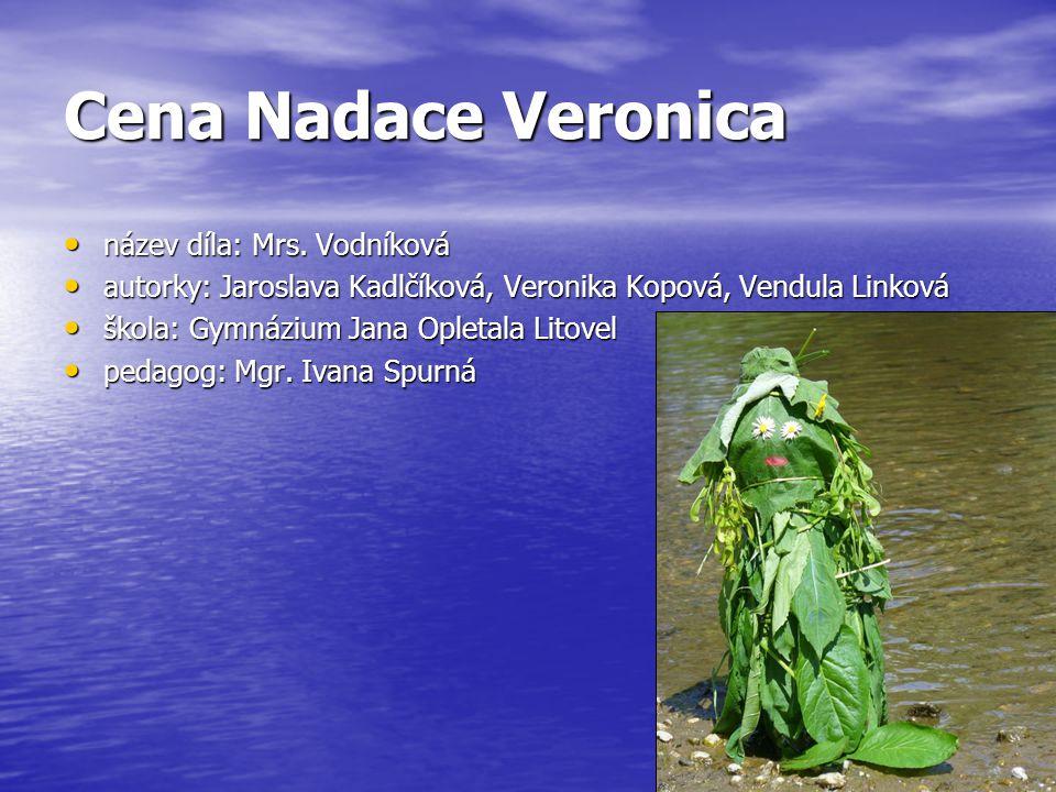 Cena Nadace Veronica název díla: Mrs. Vodníková