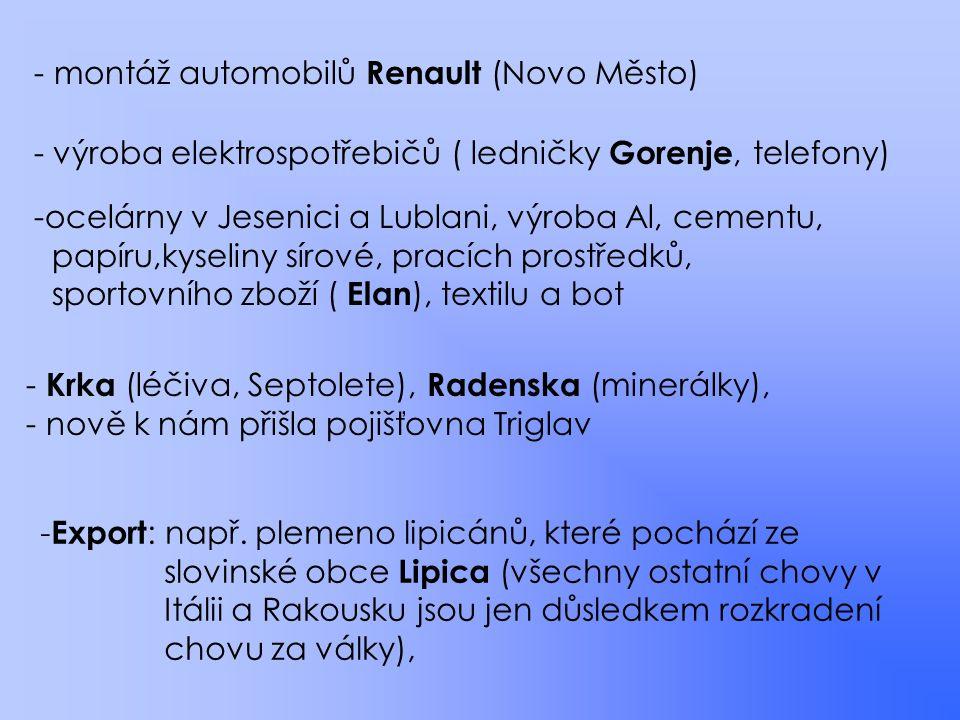 montáž automobilů Renault (Novo Město)