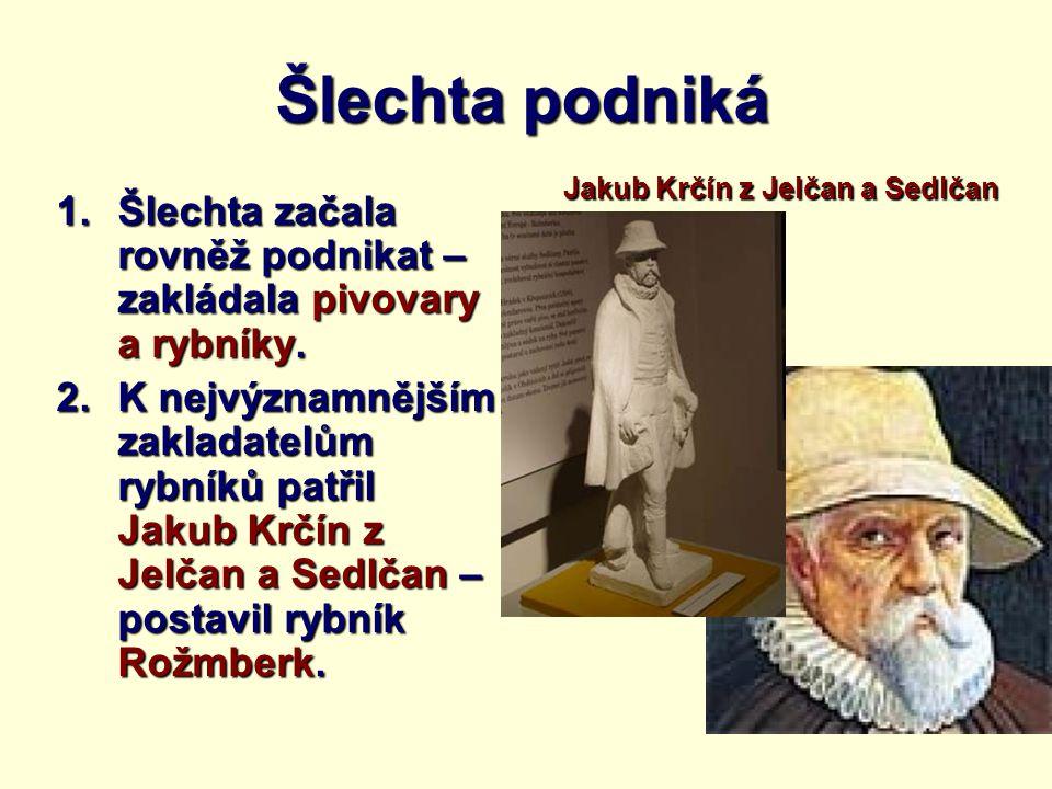 Šlechta podniká Jakub Krčín z Jelčan a Sedlčan. Šlechta začala rovněž podnikat – zakládala pivovary a rybníky.