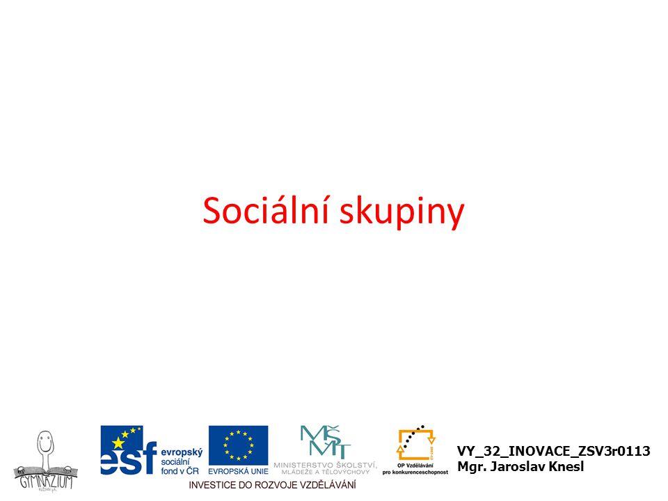 Sociální skupiny VY_32_INOVACE_ZSV3r0113 Mgr. Jaroslav Knesl