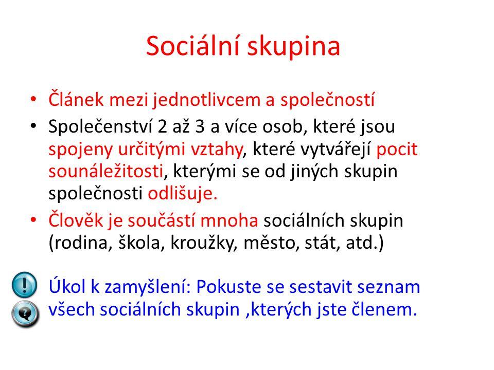 Sociální skupina Článek mezi jednotlivcem a společností