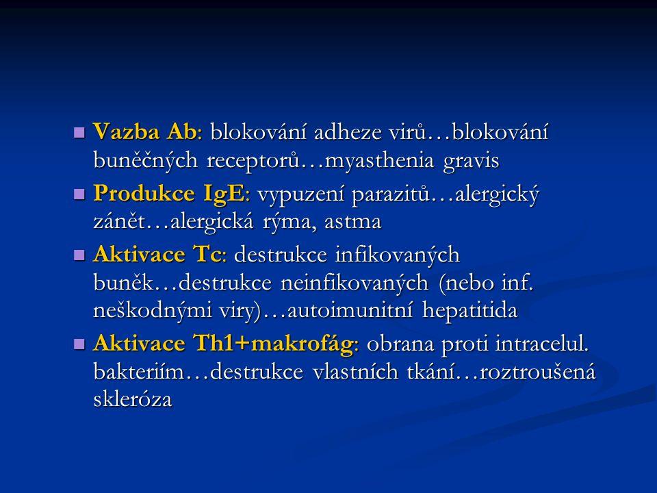 Vazba Ab: blokování adheze virů…blokování buněčných receptorů…myasthenia gravis
