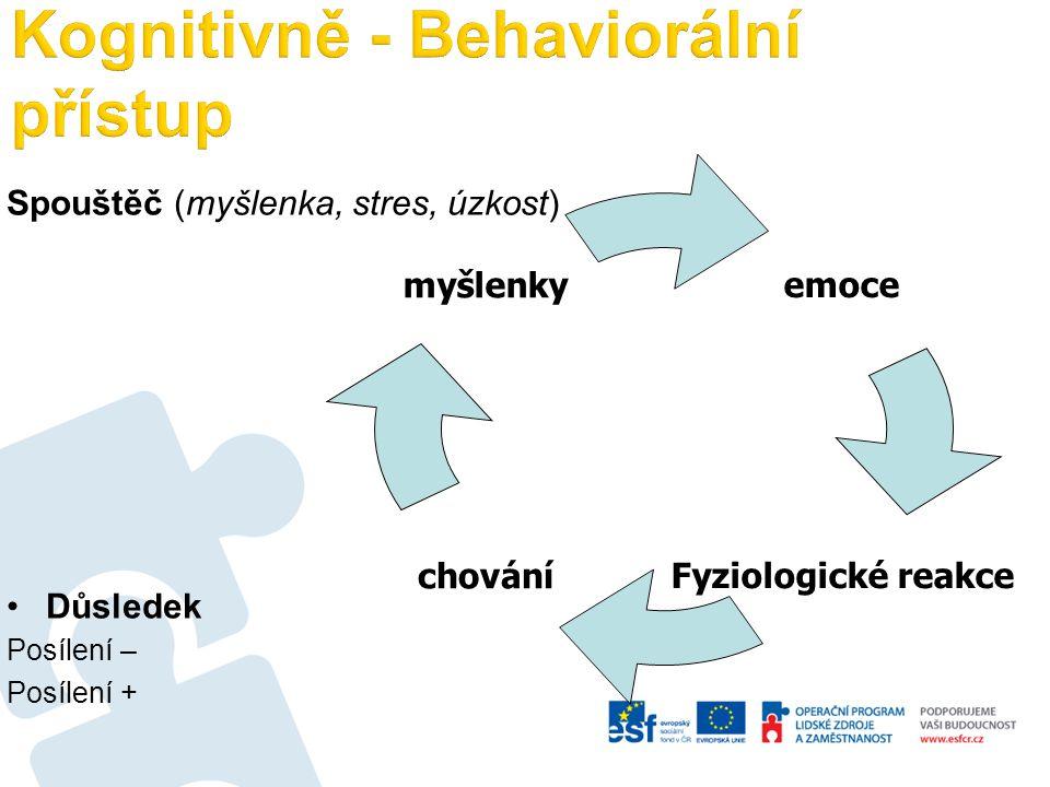 Kognitivně - Behaviorální přístup