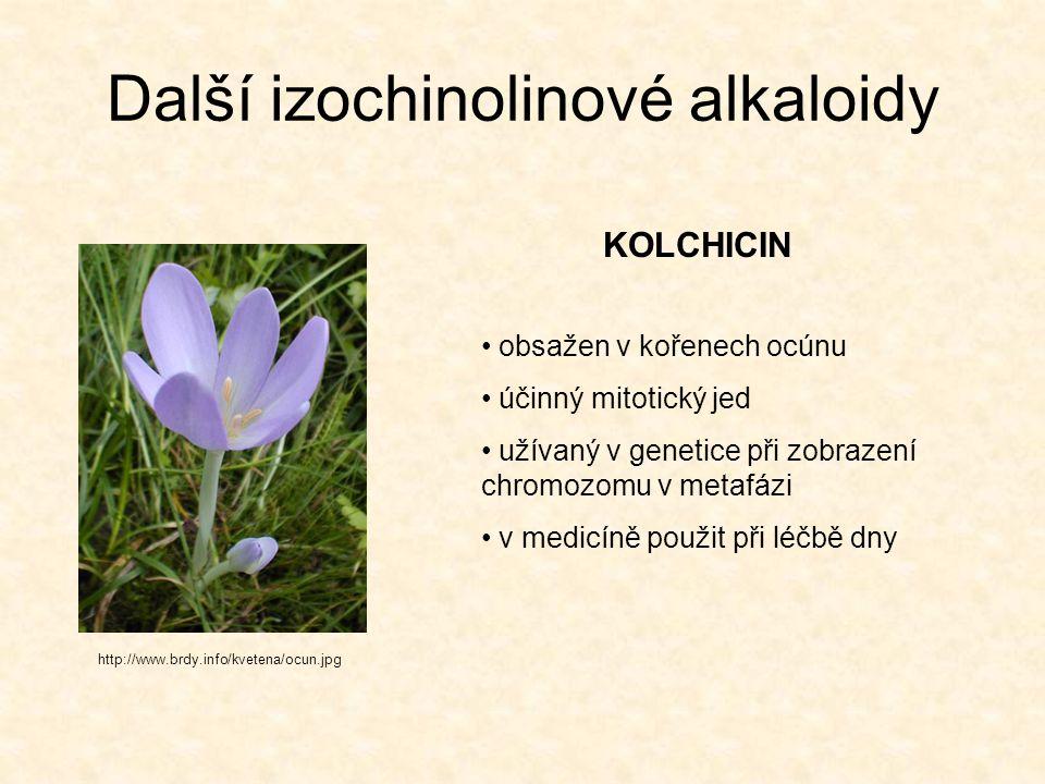 Další izochinolinové alkaloidy