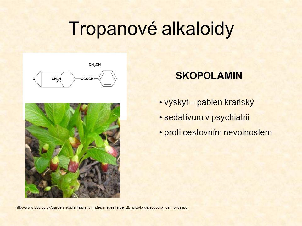 Tropanové alkaloidy SKOPOLAMIN výskyt – pablen kraňský