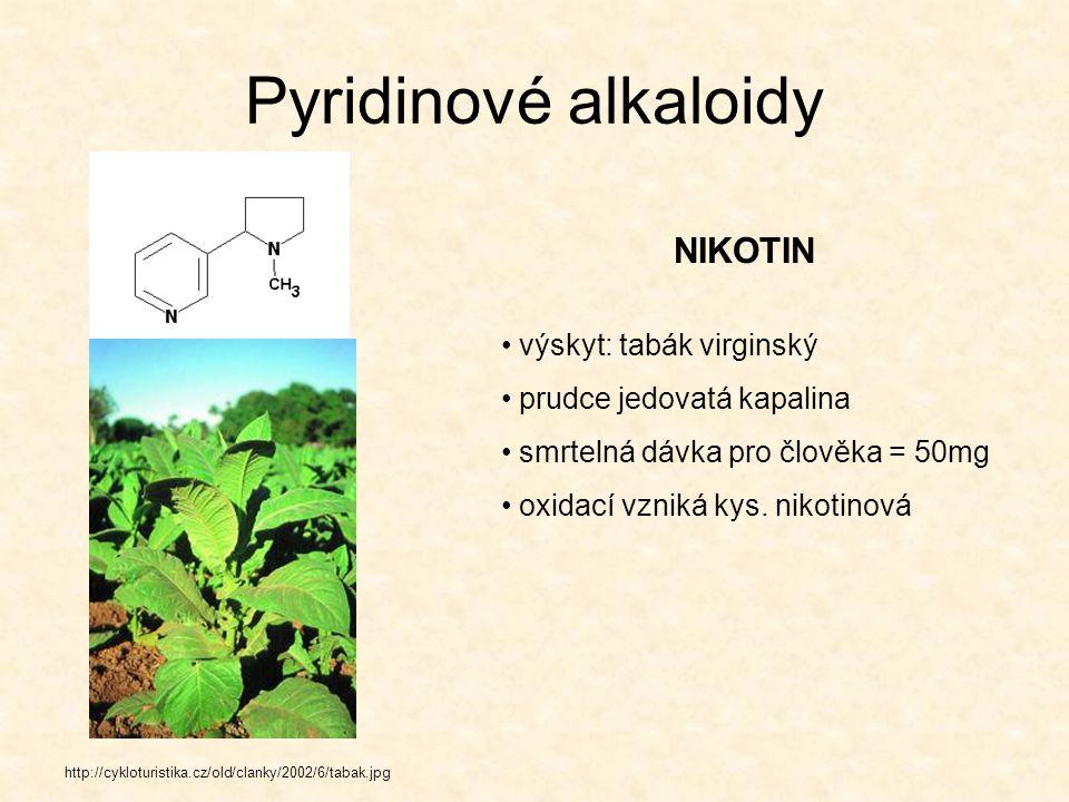 Pyridinové alkaloidy NIKOTIN výskyt: tabák virginský