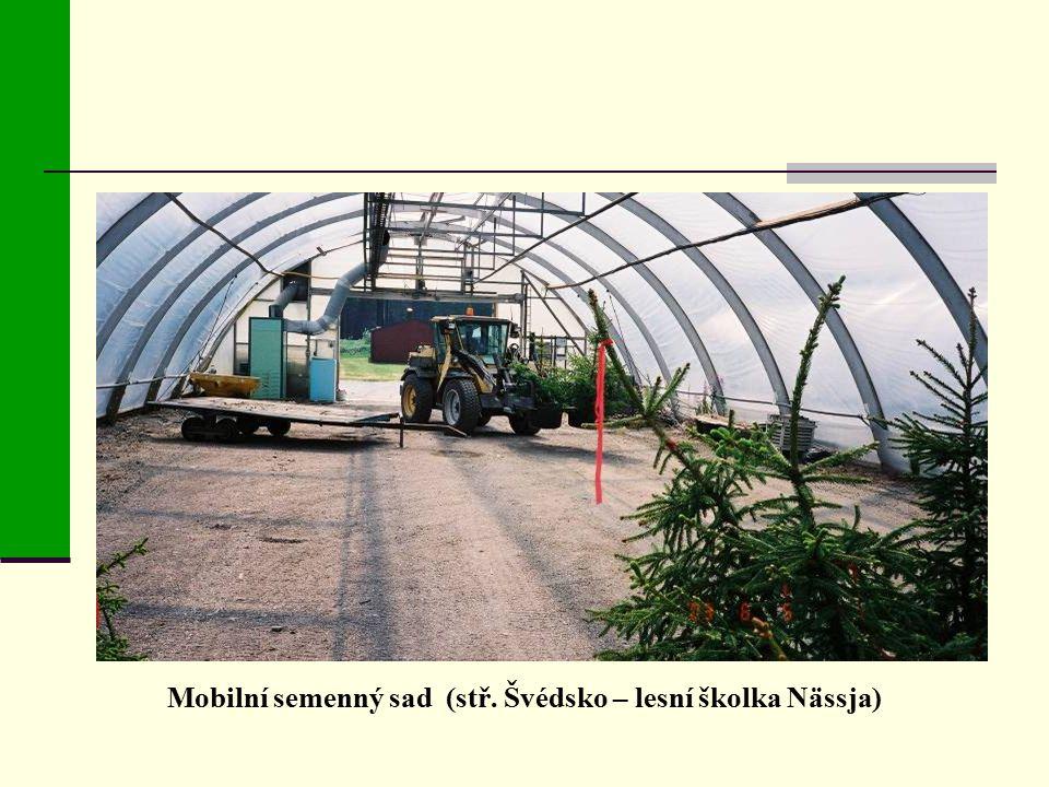 Mobilní semenný sad (stř. Švédsko – lesní školka Nässja)