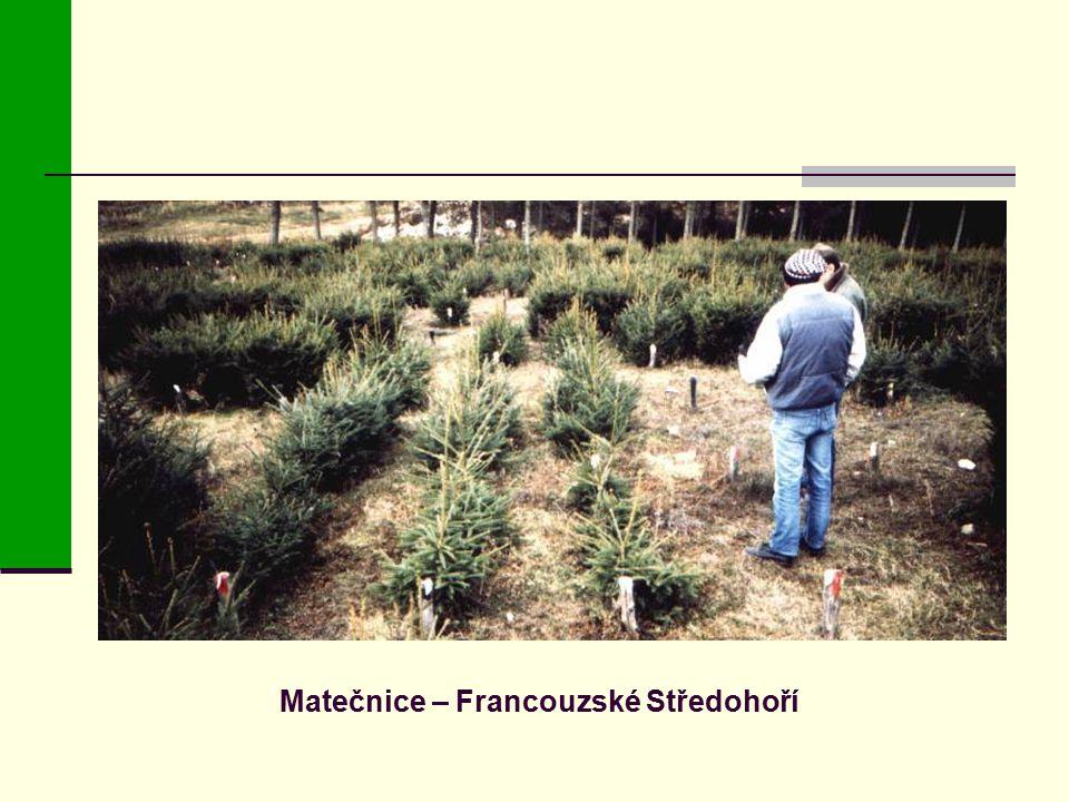 Matečnice – Francouzské Středohoří