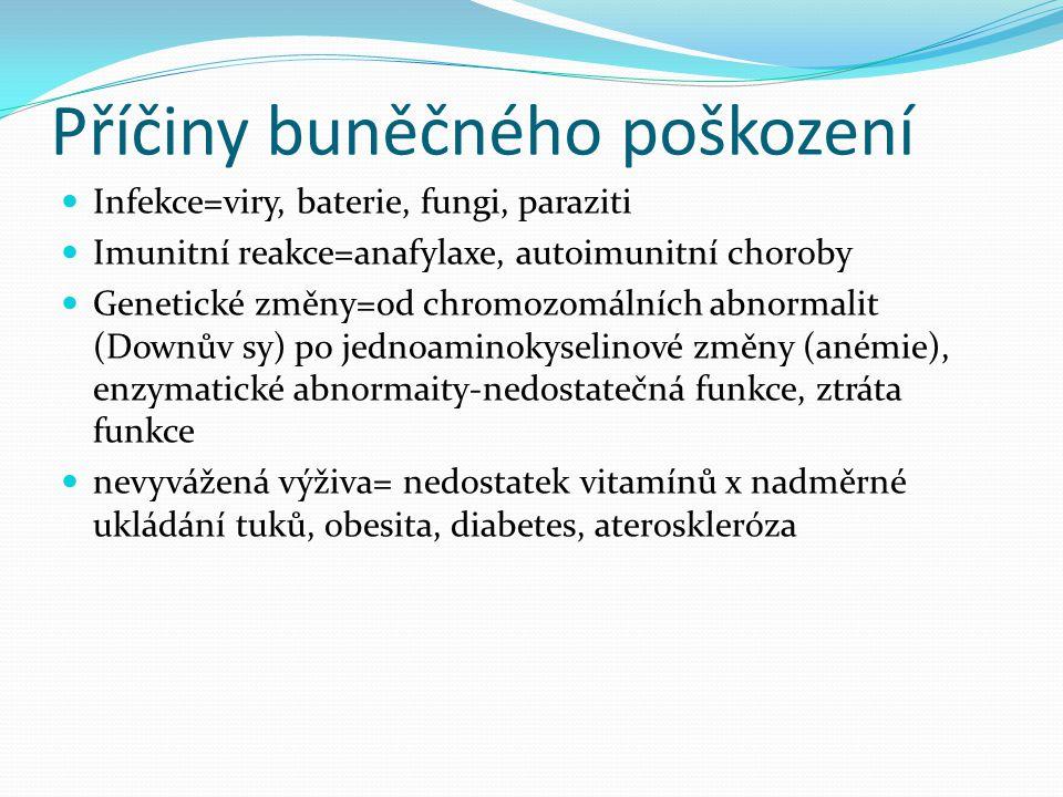 Příčiny buněčného poškození