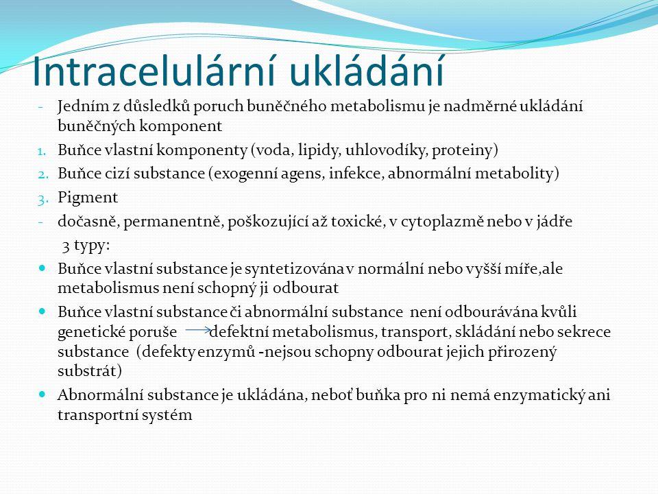 Intracelulární ukládání