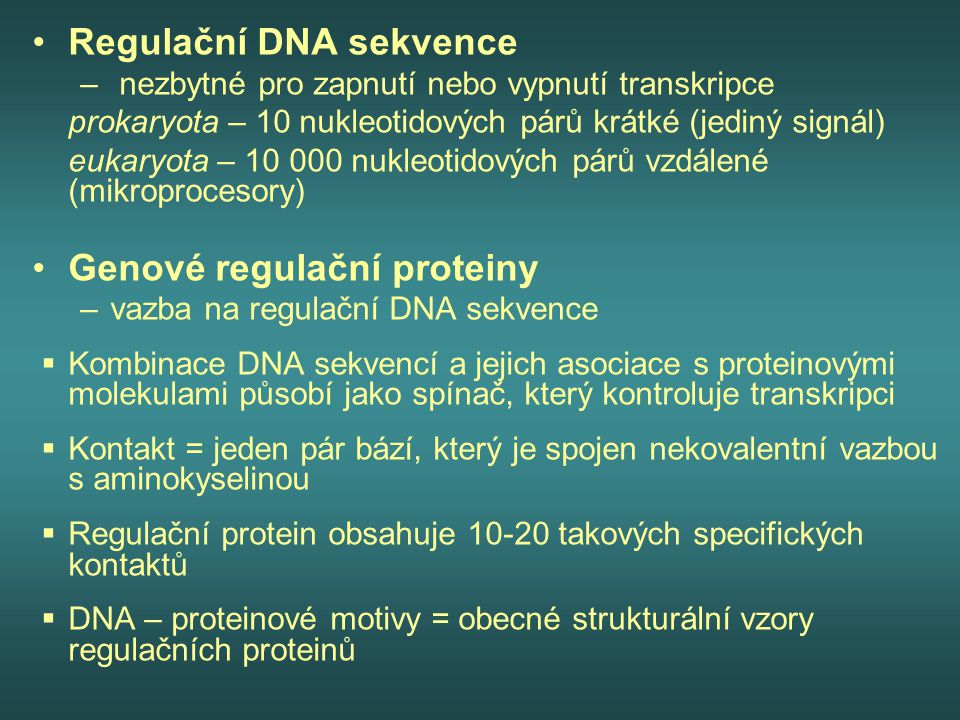 Regulační DNA sekvence