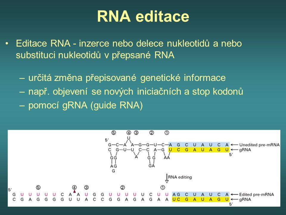 RNA editace Editace RNA - inzerce nebo delece nukleotidů a nebo substituci nukleotidů v přepsané RNA.