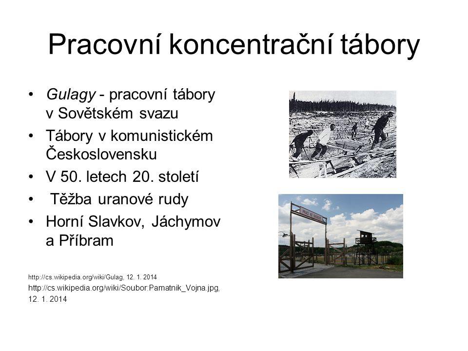 Pracovní koncentrační tábory