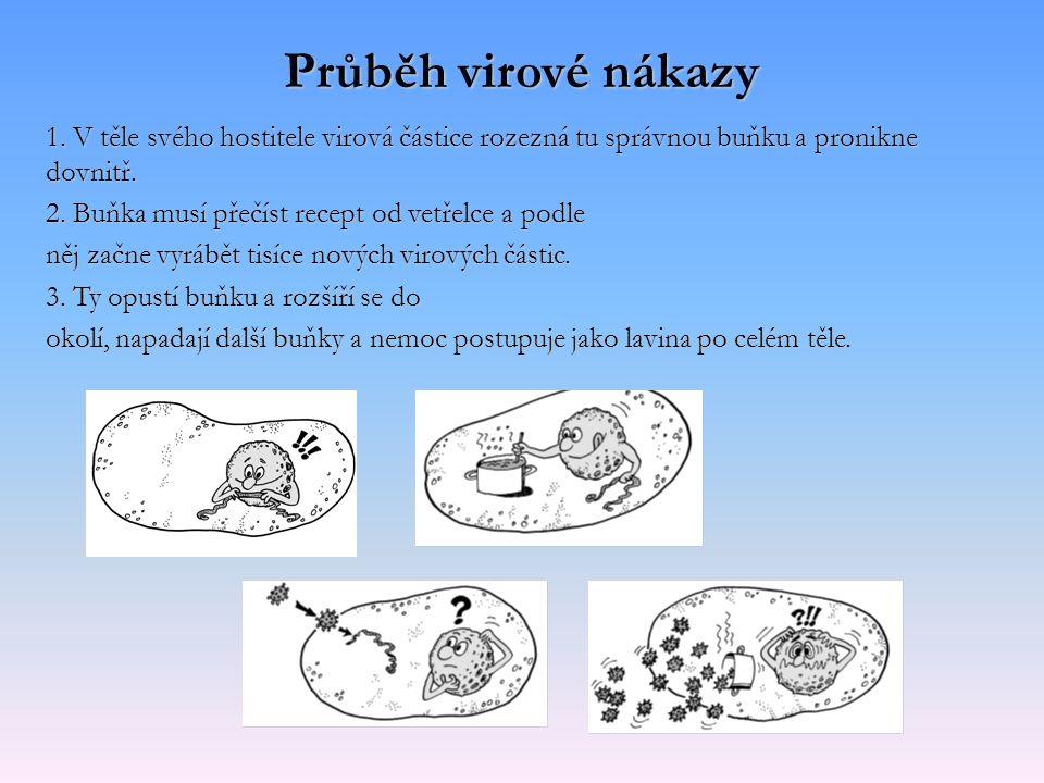 Průběh virové nákazy 1. V těle svého hostitele virová částice rozezná tu správnou buňku a pronikne dovnitř.