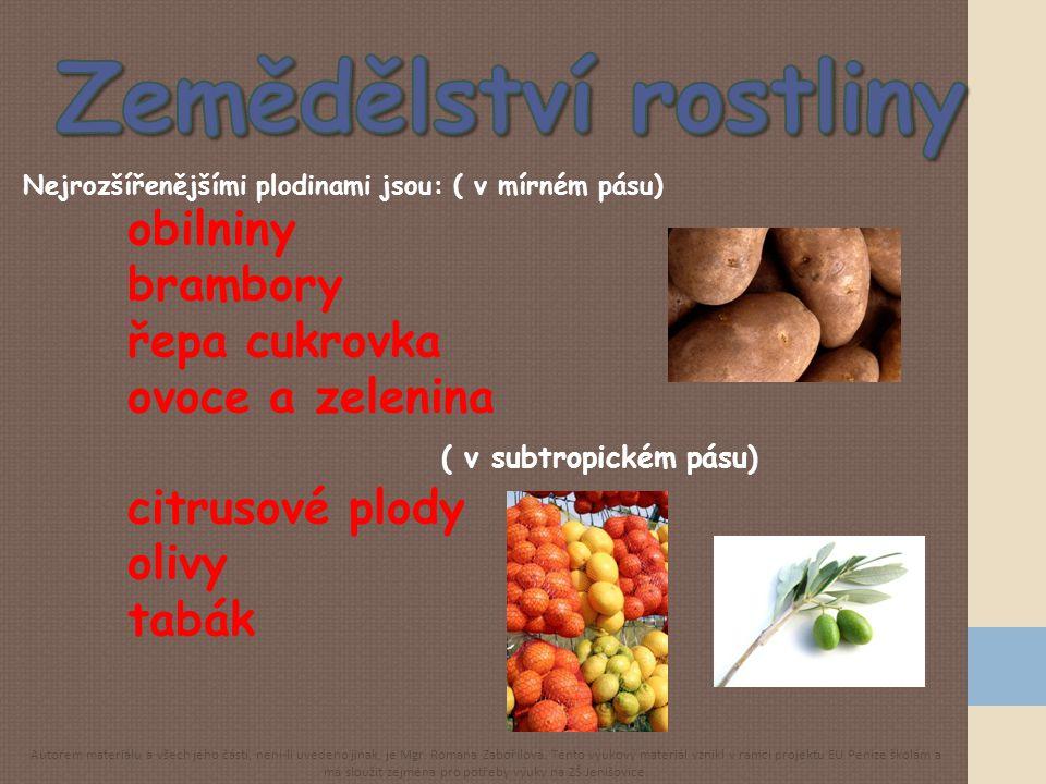 Zemědělství rostliny obilniny brambory řepa cukrovka ovoce a zelenina