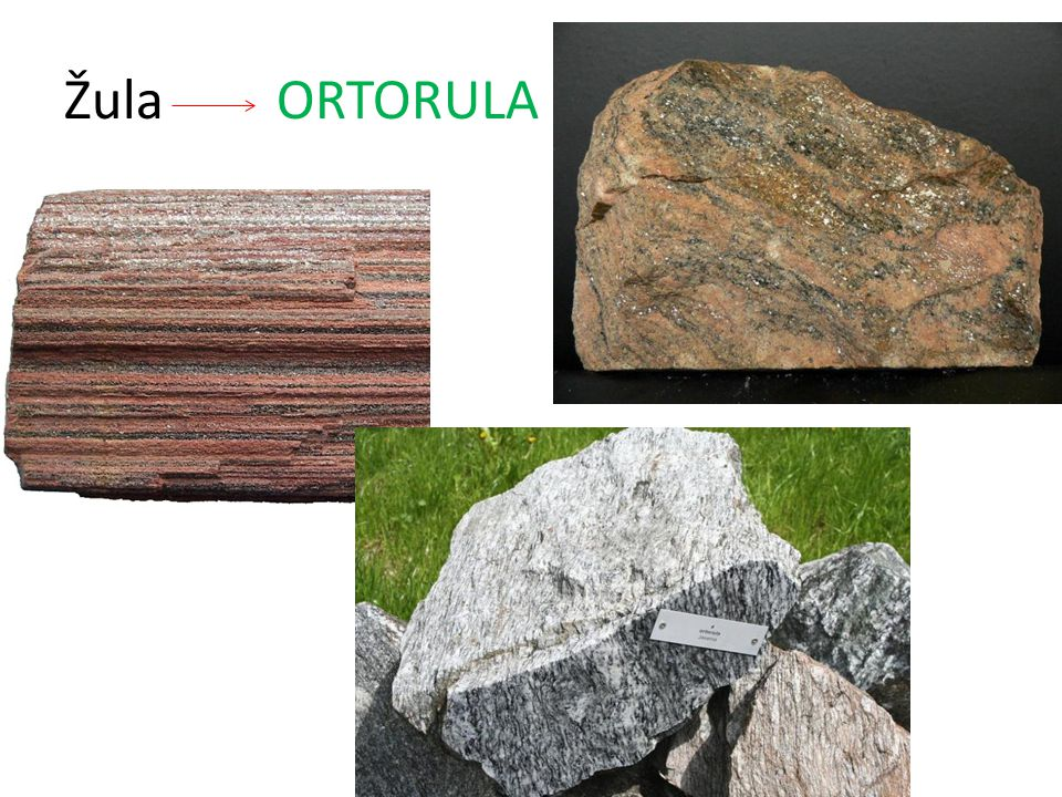 Žula ORTORULA
