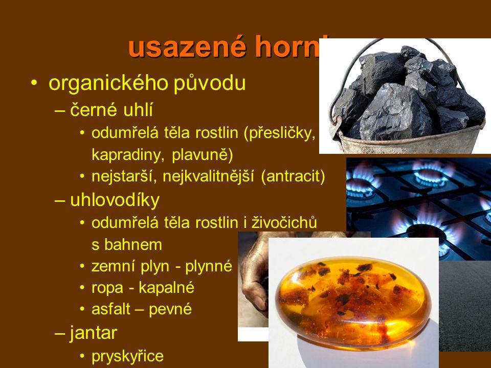 usazené horniny organického původu černé uhlí uhlovodíky jantar