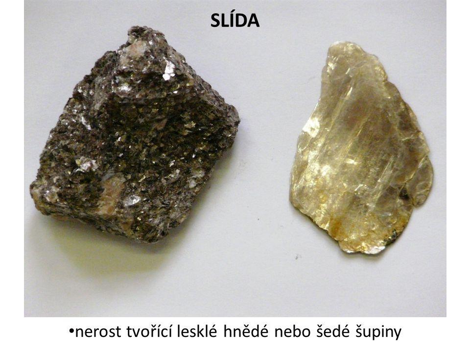nerost tvořící lesklé hnědé nebo šedé šupiny