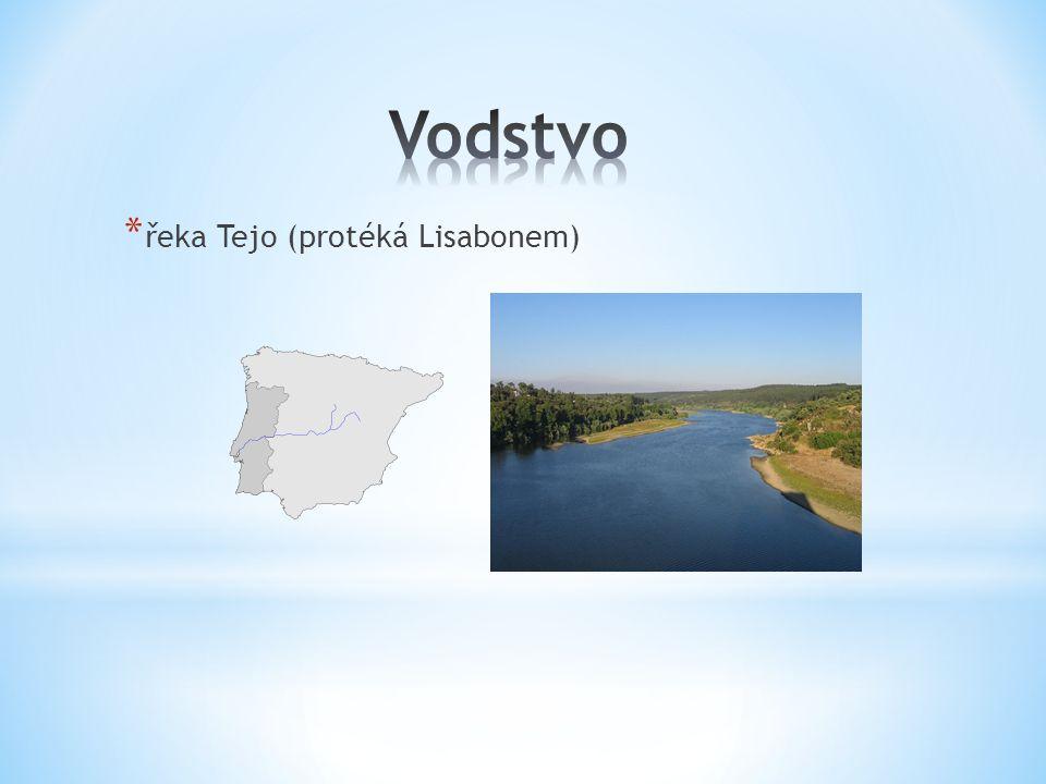 Vodstvo řeka Tejo (protéká Lisabonem)