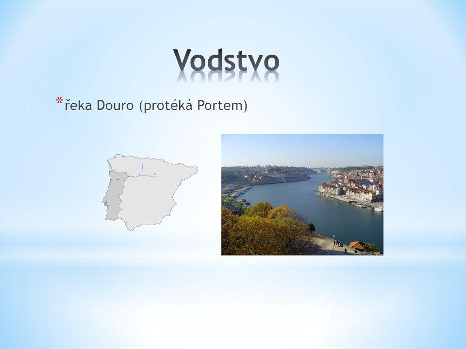 Vodstvo řeka Douro (protéká Portem)