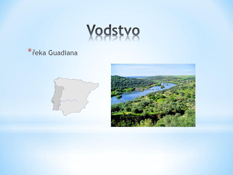 Vodstvo řeka Guadiana