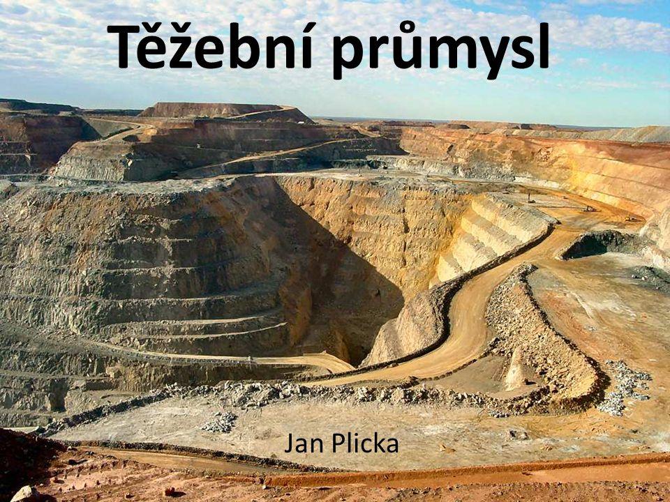 Těžební průmysl Jan Plicka