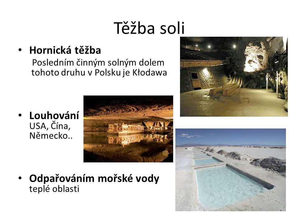 Těžba soli Hornická těžba Posledním činným solným dolem tohoto druhu v Polsku je Kłodawa. Louhování USA, Čína, Německo..