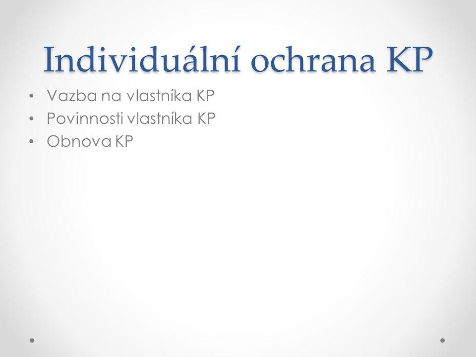 Individuální ochrana KP