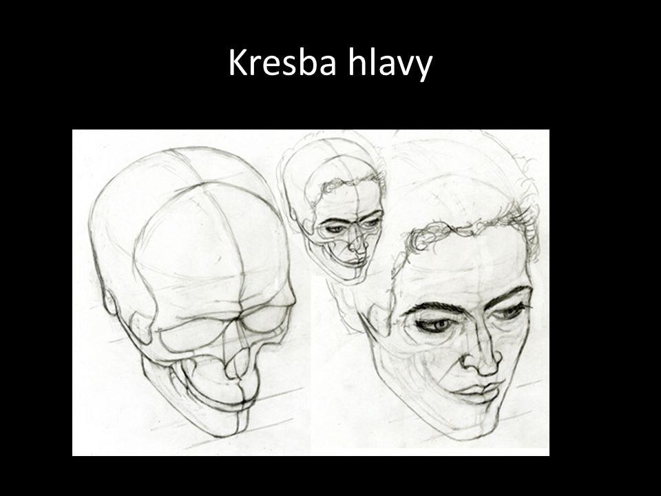 Kresba hlavy
