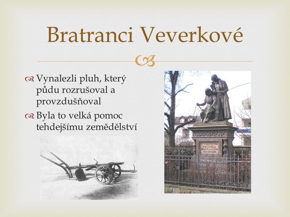 Bratranci Veverkové Vynalezli pluh, který půdu rozrušoval a provzdušňoval.