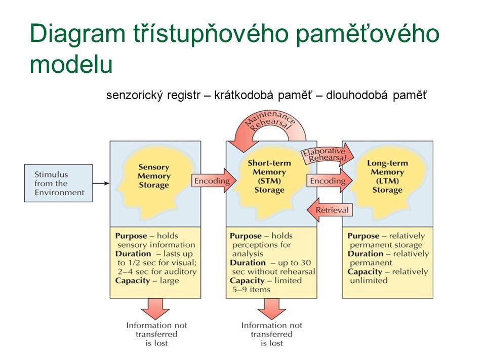 Diagram třístupňového paměťového modelu