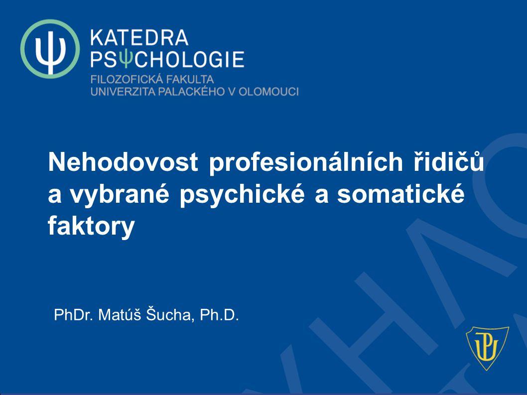 Nehodovost profesionálních řidičů a vybrané psychické a somatické faktory