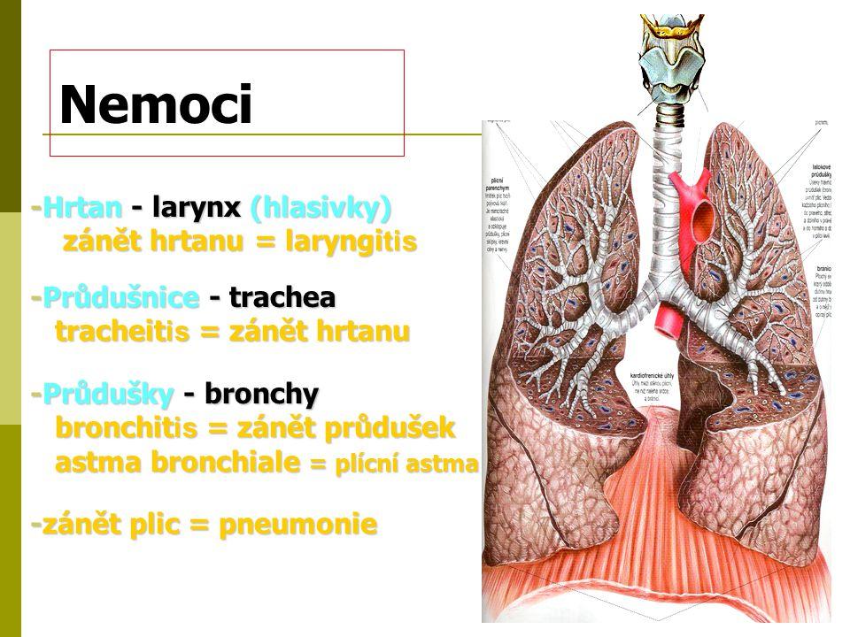 Nemoci -Hrtan - larynx (hlasivky) zánět hrtanu = laryngitis